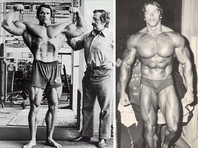 Arnold body building tips austrian alps arnold schwarzeneggers arnold body building tips austrian alps arnold schwarzeneggers incredible secret arm routine revealed malvernweather Image collections