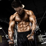 Muscle-Specific Hypertrophy: Chest, Triceps and Shoulders By Menno Henselmans